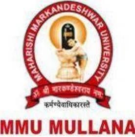 MM Institute Of Management, Ambala