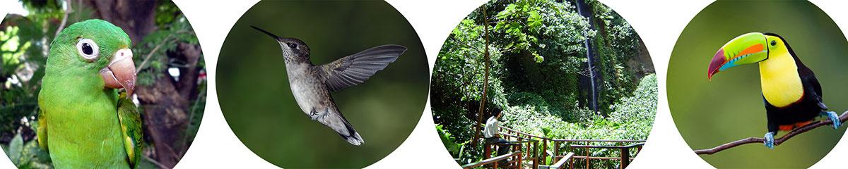 Chocoyero Nature Reserve