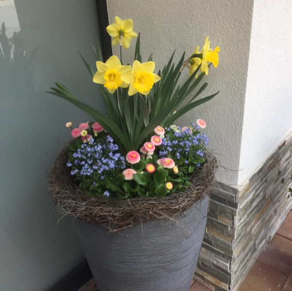 Flower Arrangement in front of the entrance