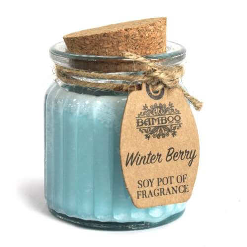 2x soy wax candle pot - winter berry