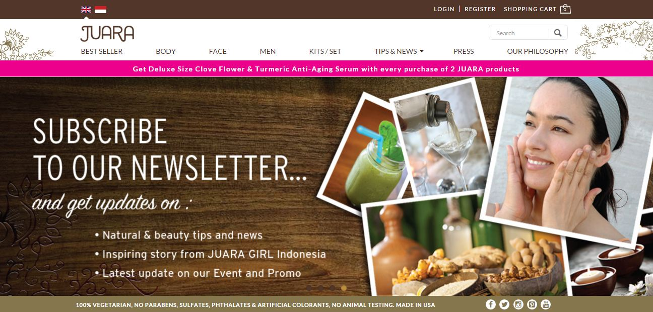 contoh newsletter perusahaan