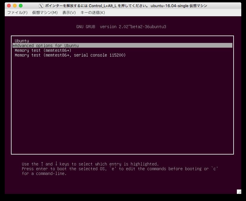 0002_Select-AdvancedOptionsForUbuntu.png