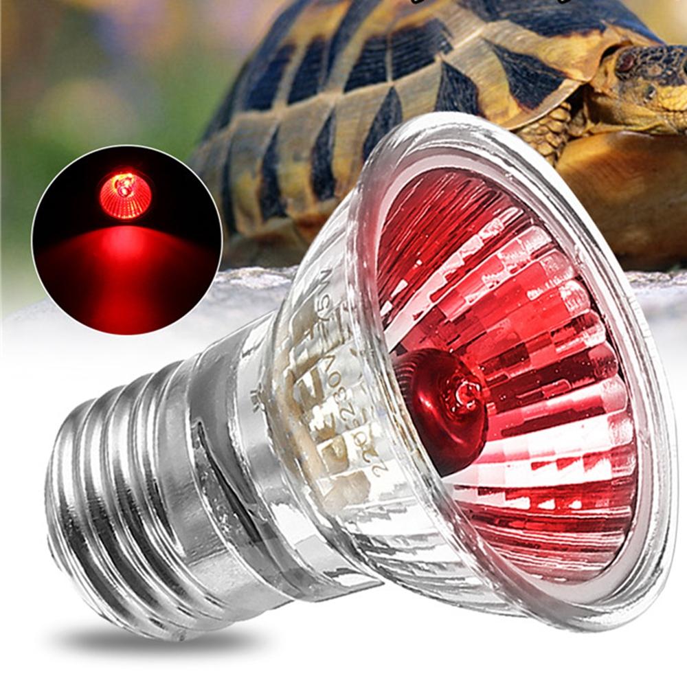Other Electrical Supplies Ac220v E27 75w Amphibian Bird Snake Heat Reptile Bulb Light Red