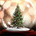 С Рождеством, Каролина!