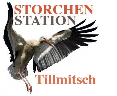 Storchenstation Tillmitsch