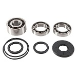 Front Differential Bearings and Seals Kit Polaris RZR 4 XP 1000 2017
