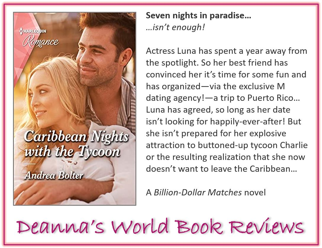 Caribbean Nights With The Tycoon by Andrea Bolter blurb