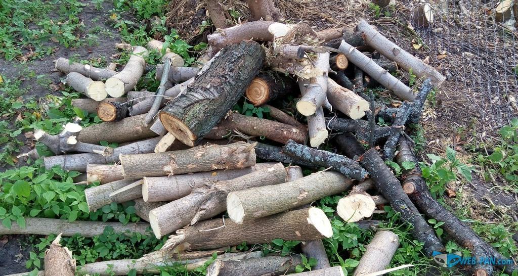 Рубим кусты и деревья на дрова, расчистка завершается!