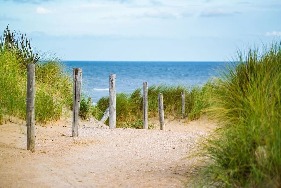 Beach with fence