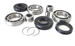 Front Differential Bearings and Seals Kit Honda TRX500 FPE Fourtrax Foreman 4x4 ES w/ Power Steering 2008-2009 and 2011