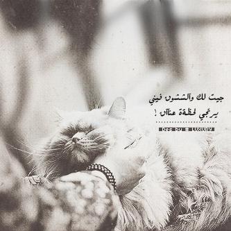 صور شبابيه حزينة شوق 2013 - صور حزينة - حزن رقم 5