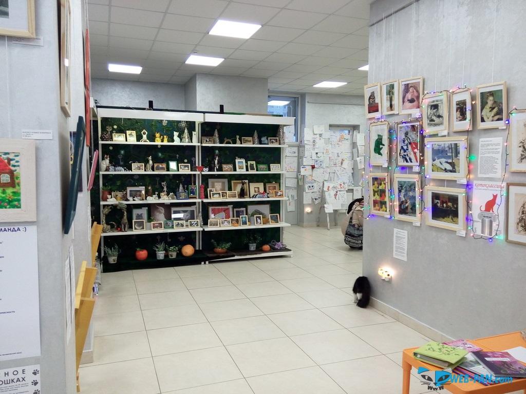 Музей кота, изнутри, фото 3!