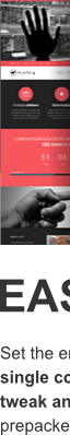 Charity skin of easily skinnable Mustang Multipurpose WordPress theme