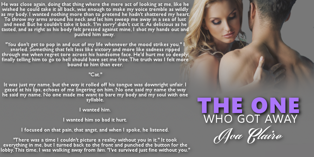 The One Who Got Away by Ava Claire teaser 3