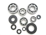 Bottom End Bearings and Seals Kit CR250M Elsinore 1973-1974 Engine