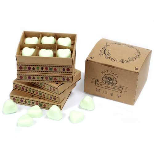 Soy wax melts in gift box - apple spice