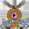 Bharati Vidyapeeth University College of Nursing, Pune