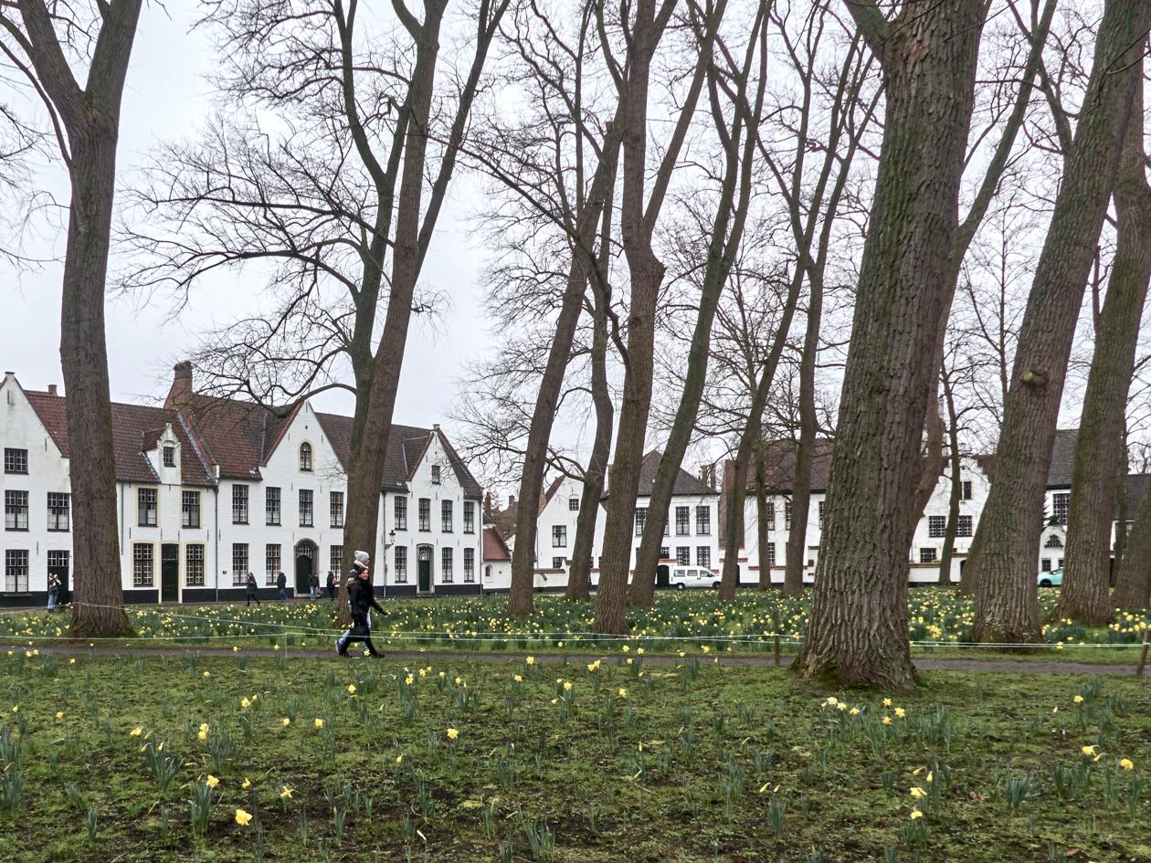 Begijnhof de Brujas