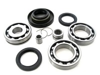 Rear Differential Bearings and Seals Kit TRX400FW Fourtrax Foreman 4x4 1995-2001