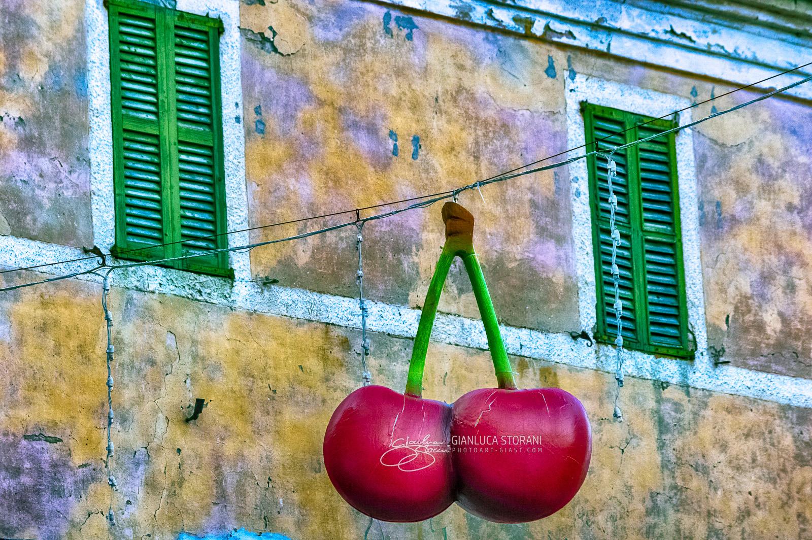 Festa del Vì de Visciola 2017 - Gianluca Storani Photo Art (ID: 4-5024)