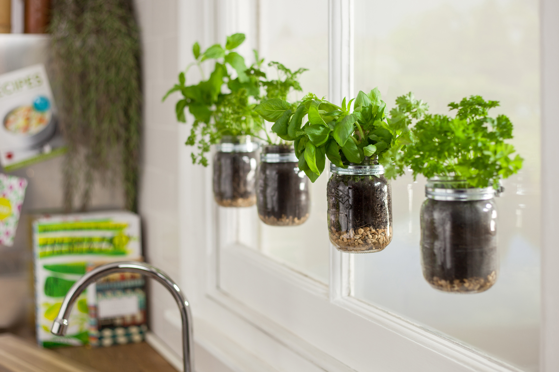 Jars with plants in them are hanging from the kitchen window.