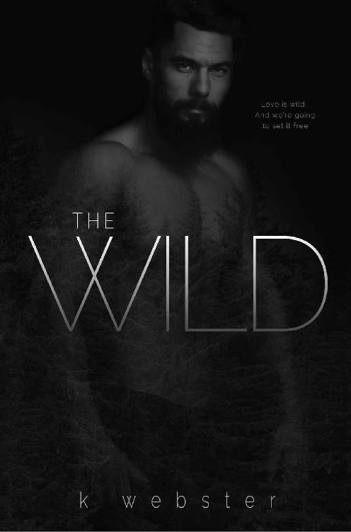 Dark romance The Wild by K Webster
