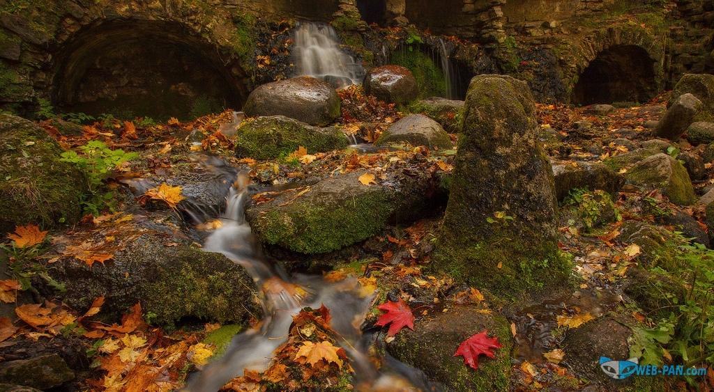 Удивительный и нетронутый уголок природы (осень), хочу побывать там - на старом ручье у развалин замка в настоящем лесу!