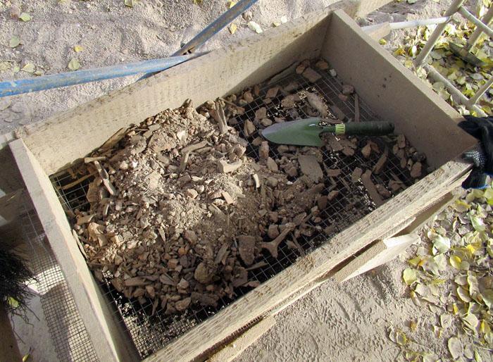 Один осенний рабочий день петербургского археолога сейчас, помещения, этого, много, работы, работ, место, дворца, мешки, помещений, находки, очень, изразцов, печных, метро, далее, время, заметку, трубок, осталось