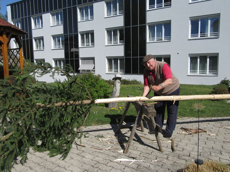 Karl beim Maibaum entrinden Bild 1