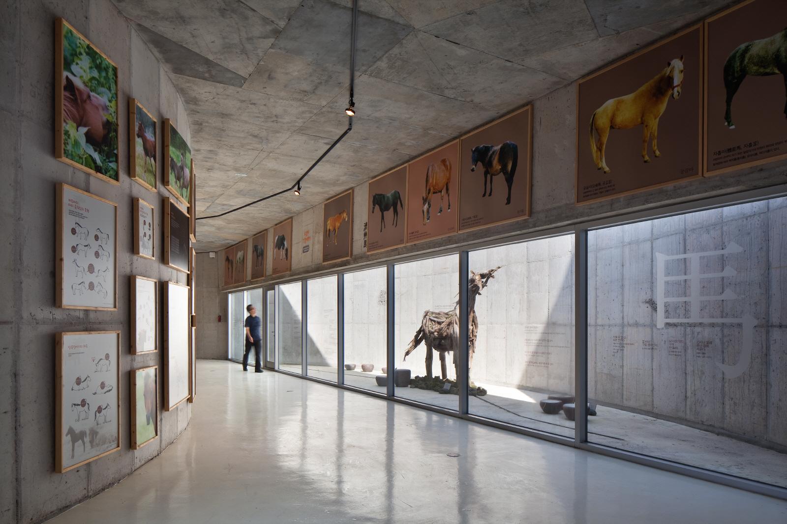 Horse Museum (4)