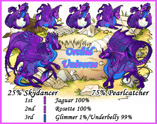 orchid%20universe.png