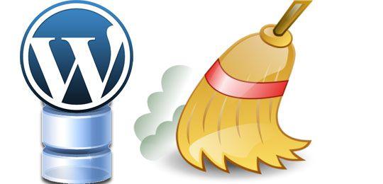 Clean-WordPress-Database