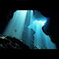 CNo.1192 海底竜窟 (ドラゴン系コミュ)