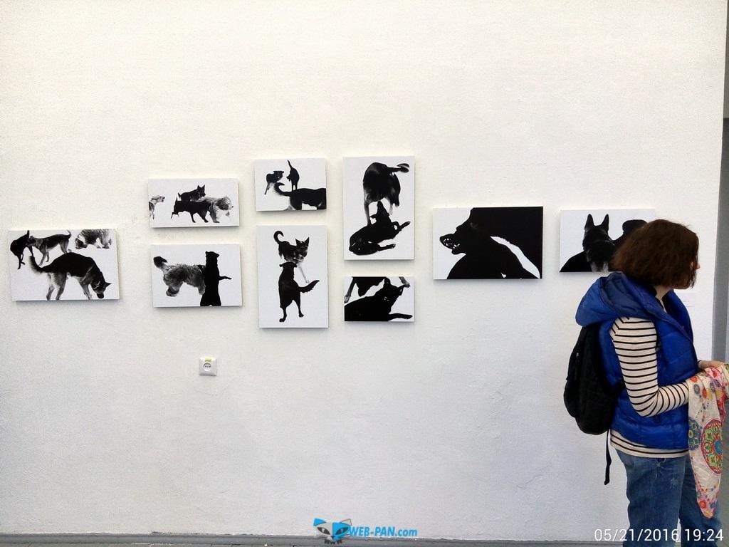 Будь гением в музее, фото внутри 2