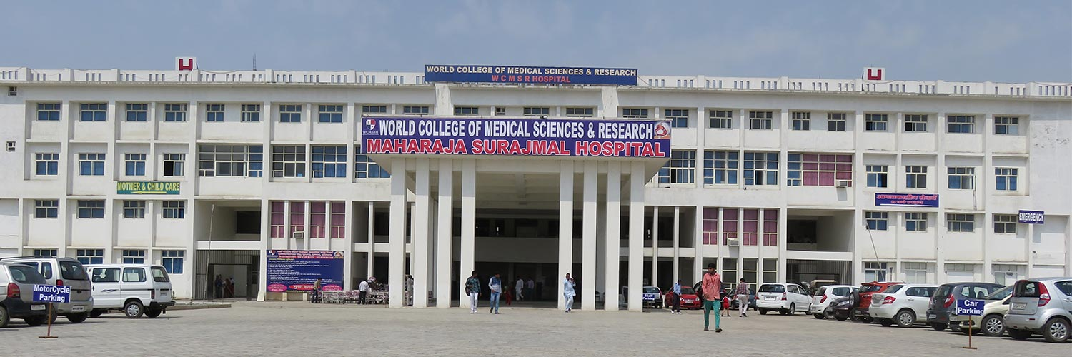 World College of Medical Sciences and Research, Jhajjar Image