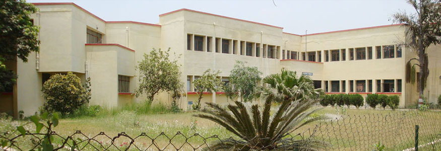 Government Girls Vocational Institute