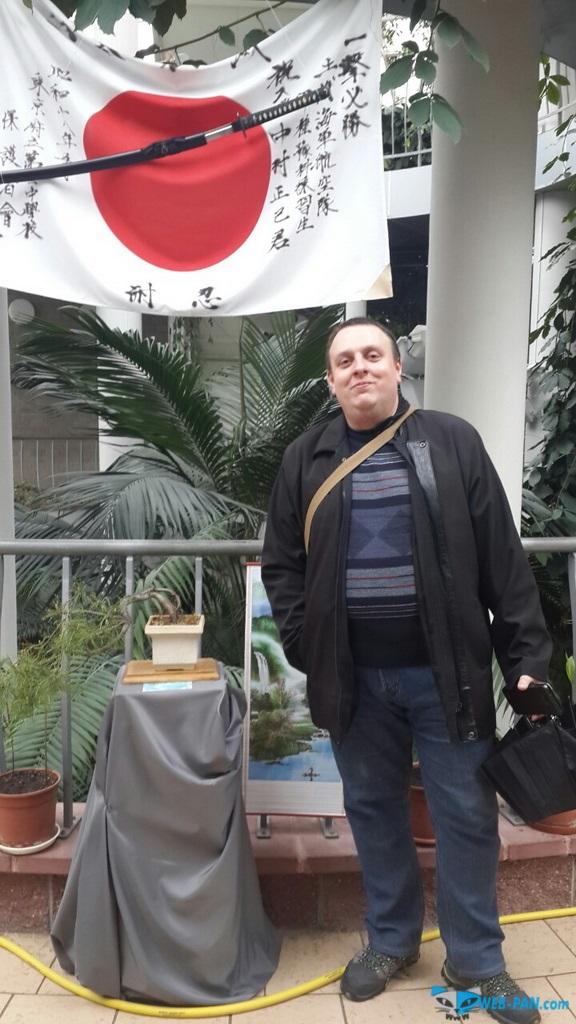 Бонсаи на выставке - фото 6