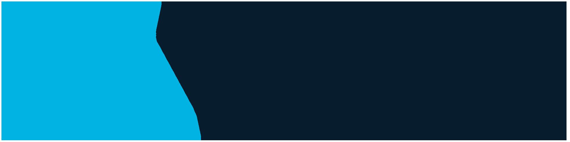 VIVE Logo