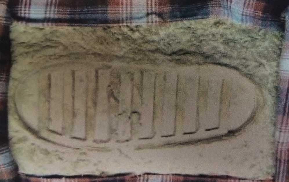 Отпечаток ботинка Нейла Армстронга на лунной поверхности