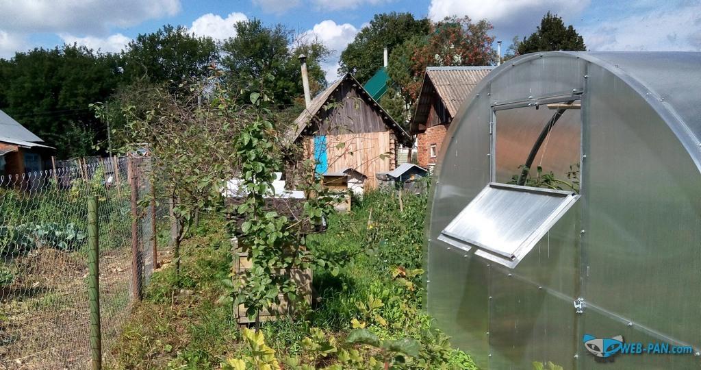 Деревня и наш забор, пасека и теплица с томатами!
