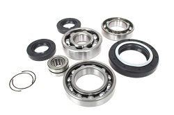 Front Differential Bearings and Seals Kit Honda TRX350 1987