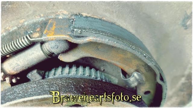 dl.dropboxusercontent.com/s/7zkpy5w1z70q1yw/DSC_2430-640.JPG