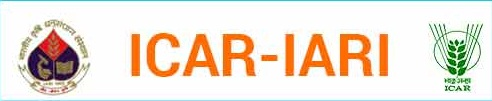 Water Technology Centre, ICAR- IARI, New Delhi 2016 Recruitment for 06 SRF & Other Posts