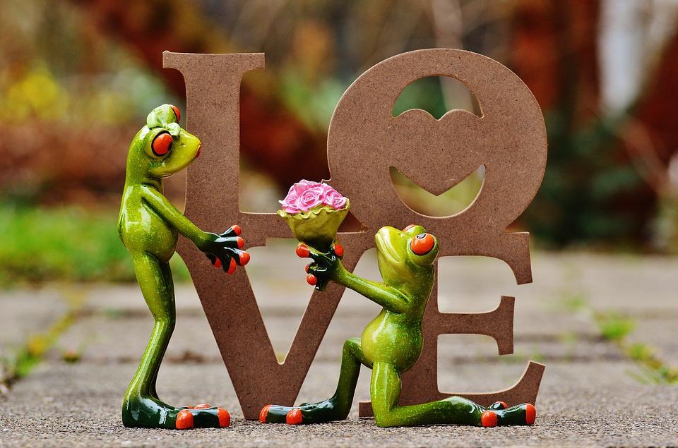 Love frogs begging