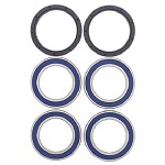 Rear Axle Wheel Bearings and Seals Kit - 25-1565B - Boss Bearing