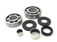 Front Differential Bearings and Seals Kit Polaris Xplorer 250 4X4 2000-2002