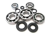 Bottom End Engine Bearings and Seals Kit Honda CR250 M Elsinore 1976 Engine