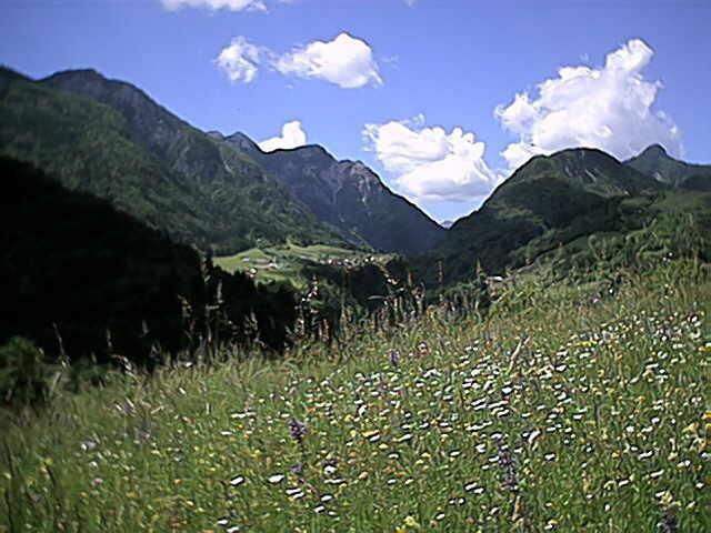 Zwischen Alpen und Adria - das Friaul