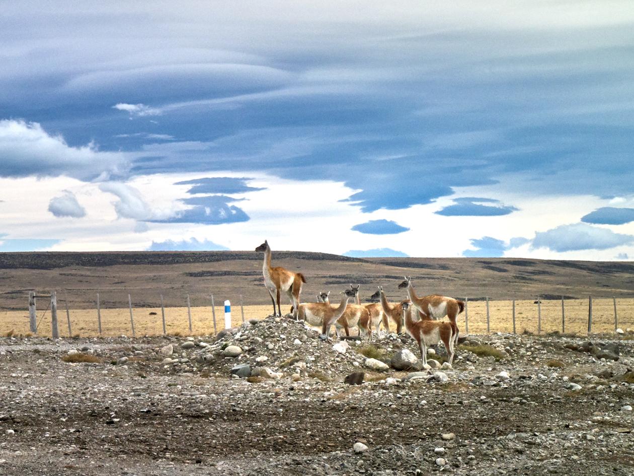 Caminos de la Patagonia