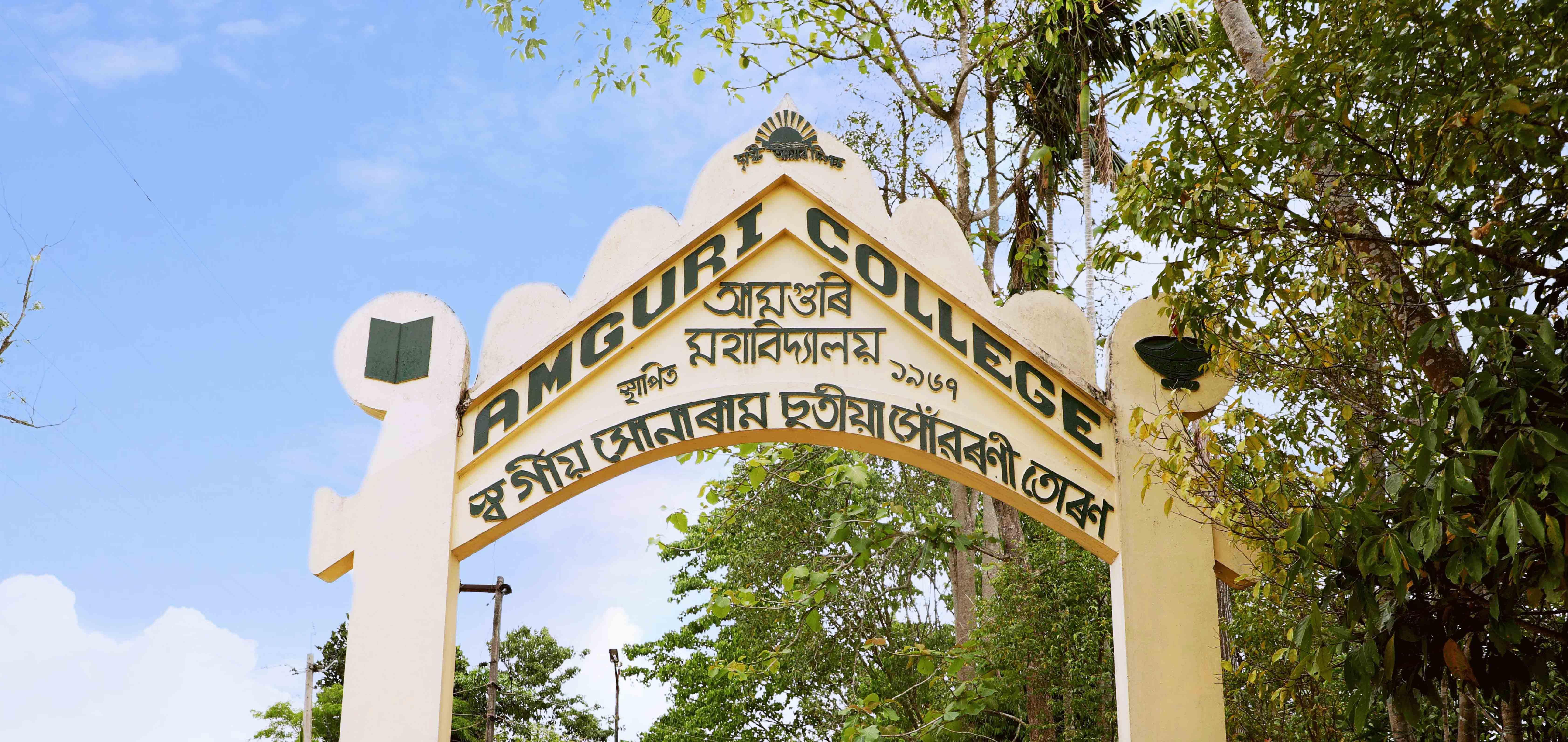 Amguri College